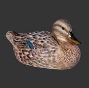 H-110020 Mallard Duck Female - Eend