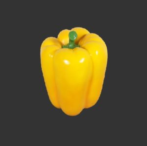 H-130042 Bell Pepper Yellow - Paprika - 44 cm