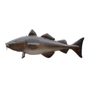 G-191 Fish XXL - Vis