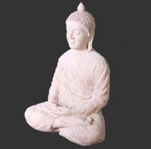 H-030415-RS Divine Buddha - Boeddha