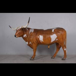 H-170163 Bull Texas Longhorn - Stier