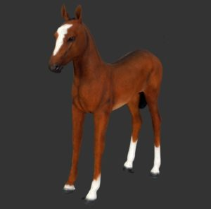 H-120043 Veulen - Paard