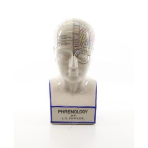 DSPP-10 PORCELAIN PHRENOLOGY HEAD - Buste