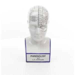 DSPP-11 PORCELAIN PRENOLOGY HEAD - Buste