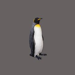 dierenbeeld dierenbeeld polyester beelden