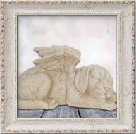 Hond & Kat Urnen