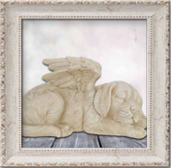 Urn Hond & Kat
