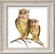 Uilen & Vogels