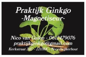 praktijk-ginkgo-magnetiseren-magnetiseur