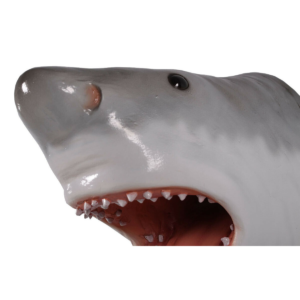"H-190033 Shark Great White Head 11"" - Haai"