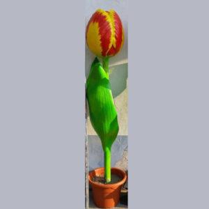 I92 Tulip Red/Yellow XXL - Tulp - 190 cm