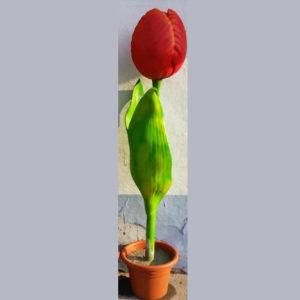 I92 Tulip Red XXL - Tulp - 190 cm