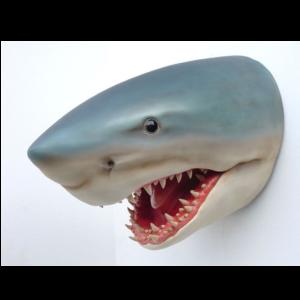 2077 Shark Head - Haai