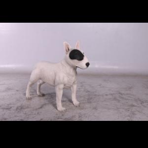 H-150238 Bull Terrier White